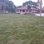 2 residential sod after